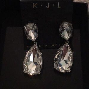 Beautiful earrings. Brand new, never worn